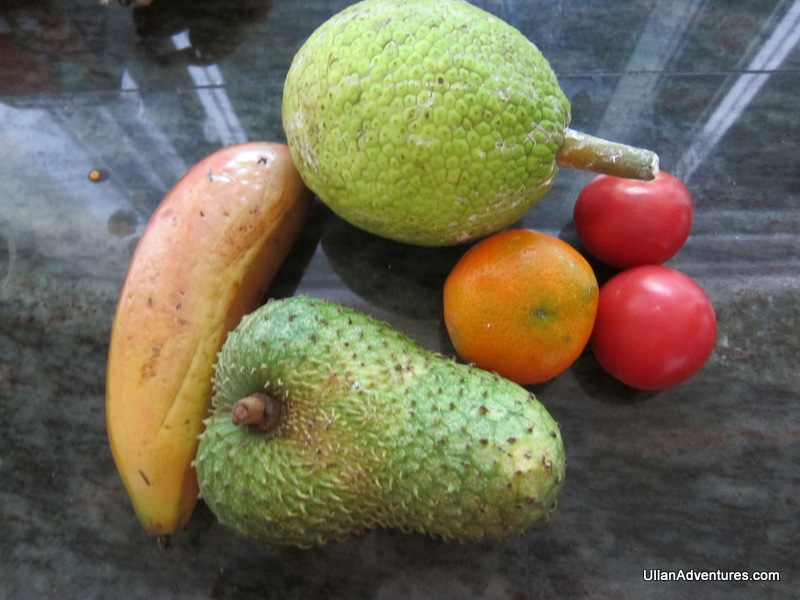 Breadfruit, guanabana & more