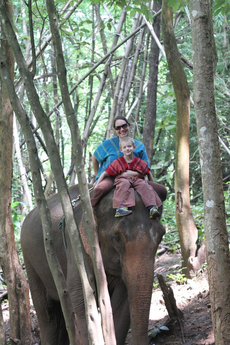 Riding an elephant in Chiang Mai, Thailand