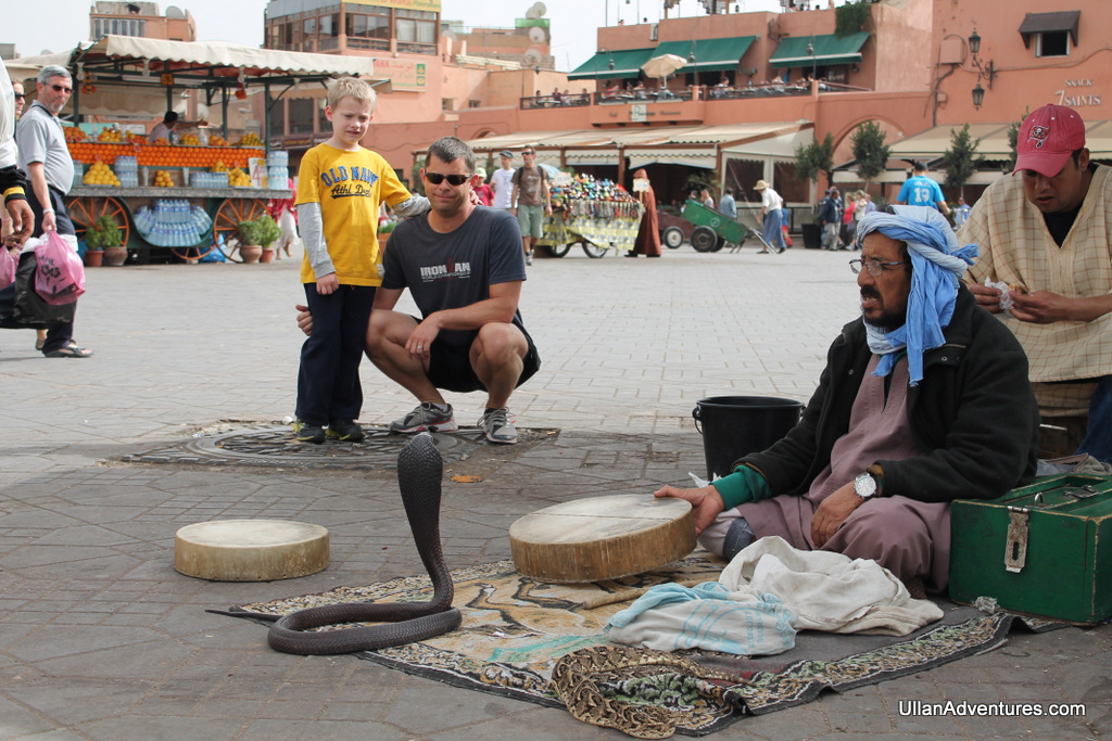 Watching a cobra in the Medina in Marrakech, Morocco